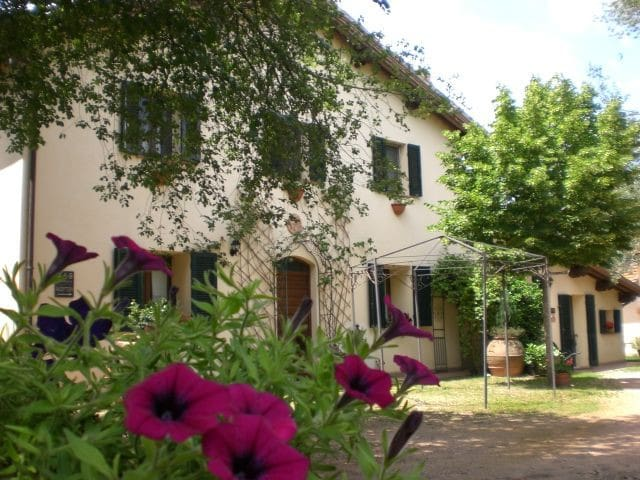 Your holidays in the green   Umbria