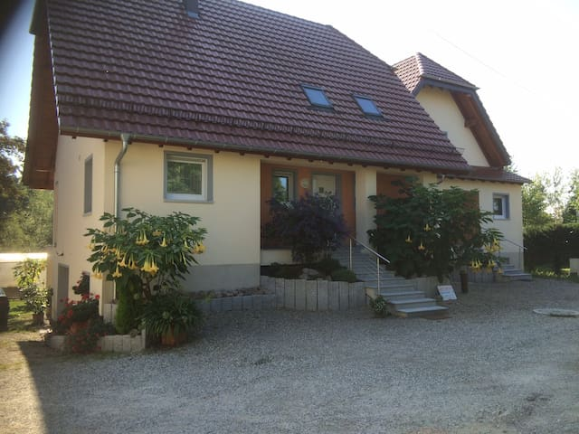 Appartement haut de gamme10 minutes de Strasbourg - La Wantzenau - Hus
