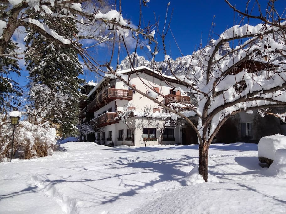Our garden in winter with Monte Marcora