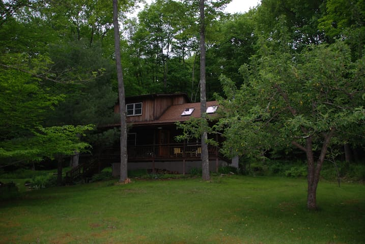 Secluded log cabin in the woods