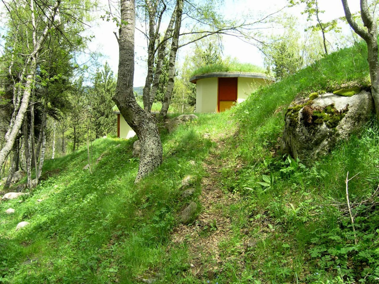 yurt in environment
