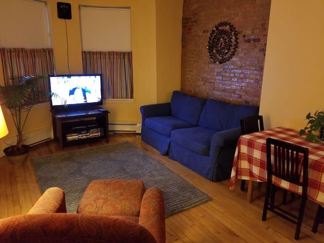 Great time to visit Boston! Adorable 1BR Condo.