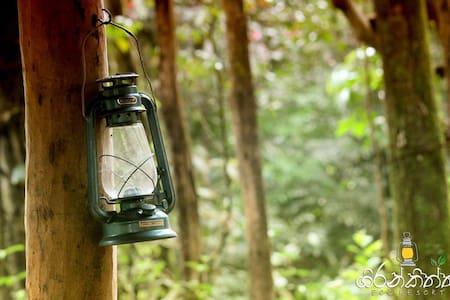 Girankiththa Eco Resort(3) - Kitulgala