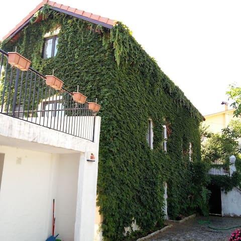 Casa Agricola do Limonete - Figueira da Foz - Huis