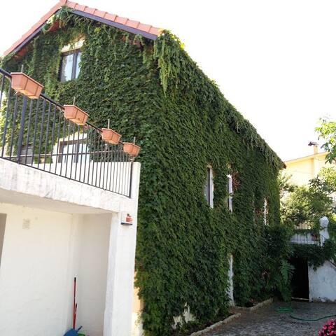 Casa Agricola do Limonete - Figueira da Foz - Maison
