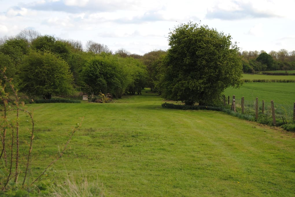 Field for camping