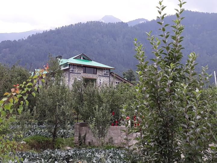 Passion Hut (Green) @ Manali Home