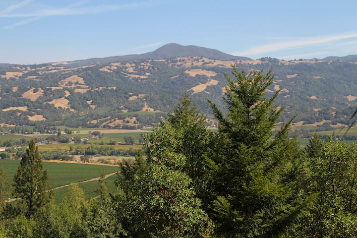 Alexander Valley Lodge Valley View - Geyserville  - Haus