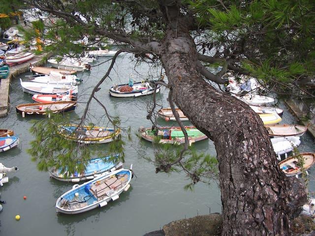 monolocale in centro storico a Monterosso