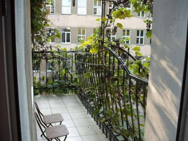 Comfortable apartment in historical part of Lviv - L'viv - Hus