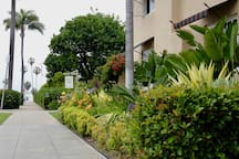 The Cove - The Bed & Breakfast Inn at La Jolla