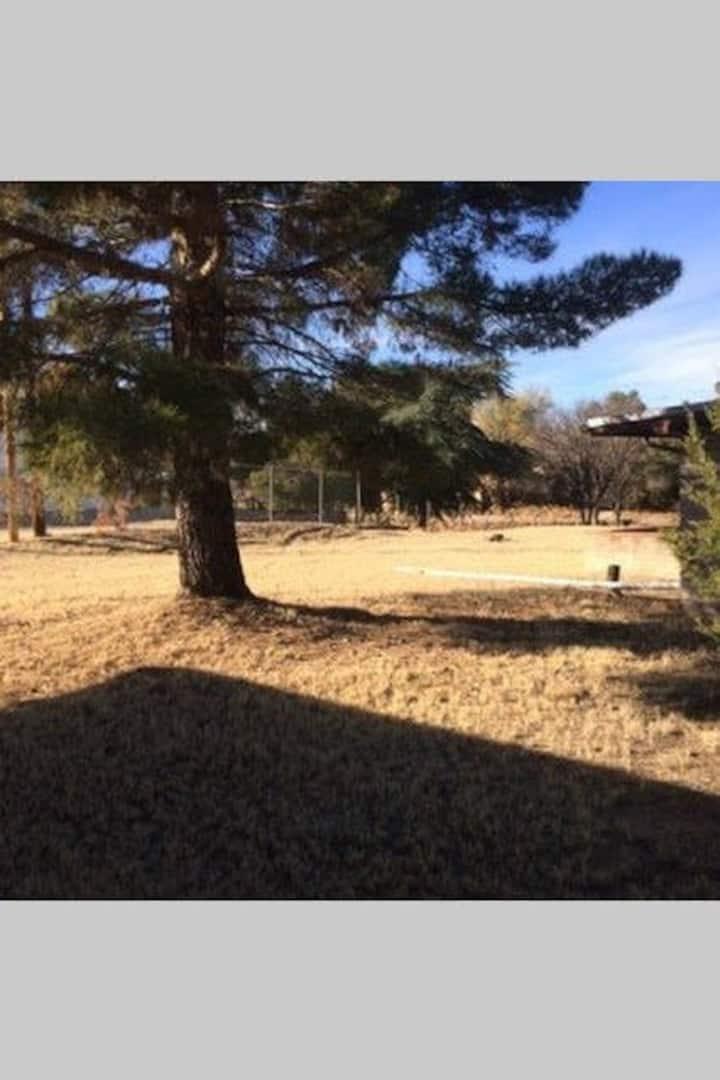 Quiet, convenient apartment in southern Arizona