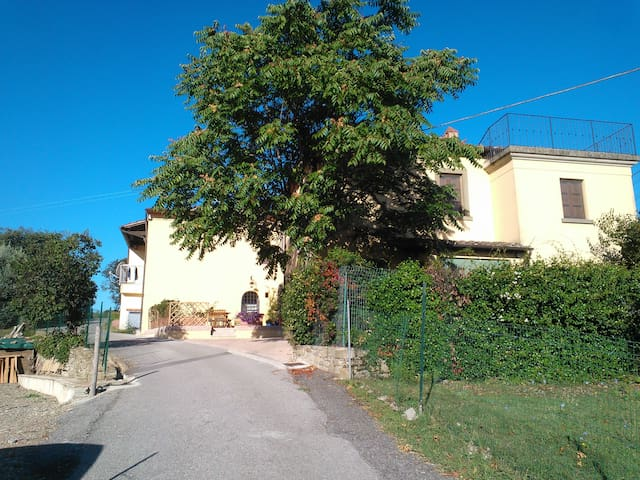 """Mirjam's Home "" Monte San Savino - Monte San Savino - Casa"