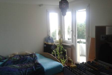 Zimmer mit Balkon Zur Untermiete - Appartement