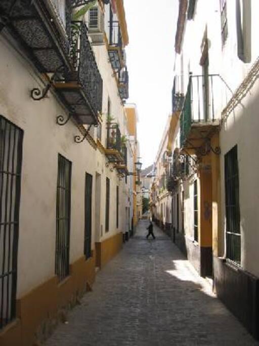 2. Vista calle