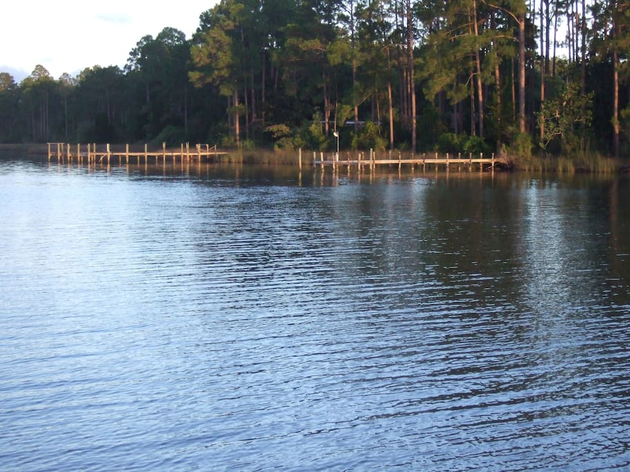 View of bayou out back door of house.