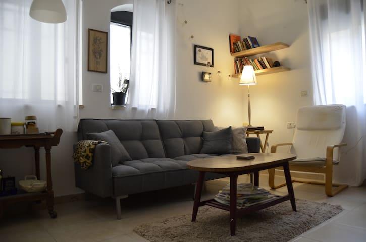 Cozy 1 bedroom apt. close to city center