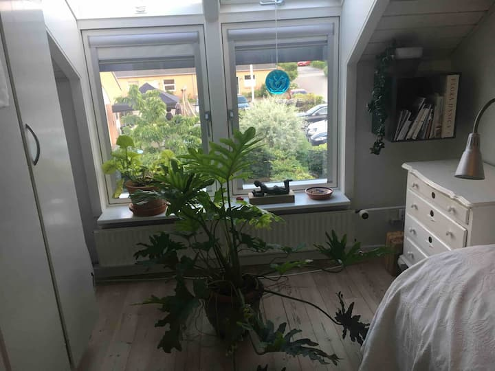 Enkelt værelse i roligt kvarter