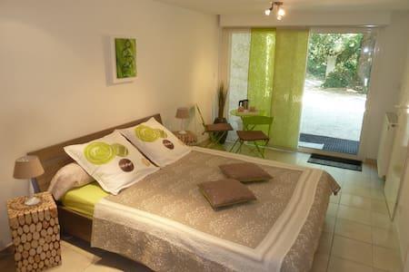 Chambre d'hôtes - Saint-Uze - 단독주택