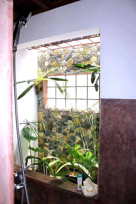 Salle de bain Villa N°2 avec son petit jardin intérieur et toiture ouverte