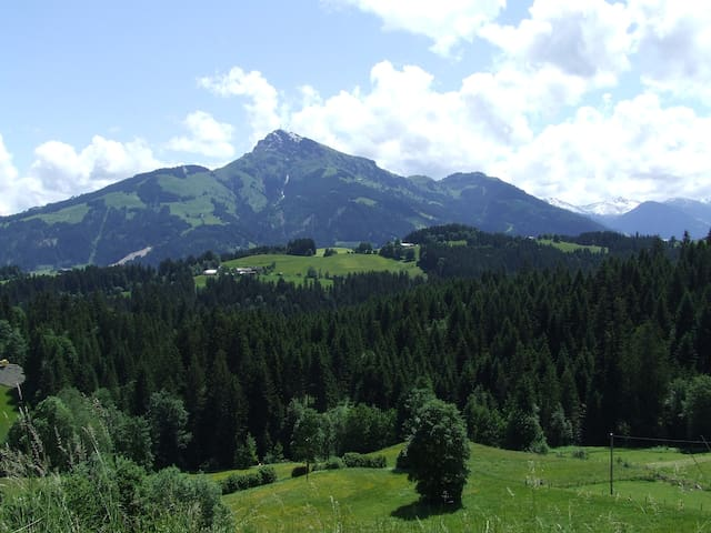 Almhütte bis 6 Per. mit Bergblick - Going am wilden Kaiser - House