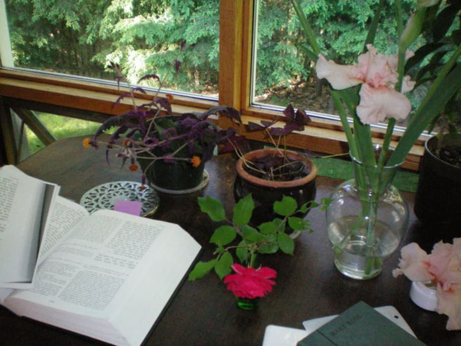 Plants & flowers on the living/ dining-room table.