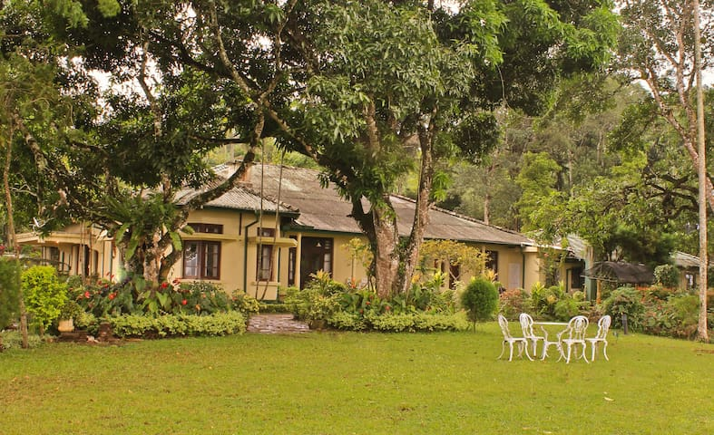 Ancoombra Tea Estate Bungalow - Kandy - Willa
