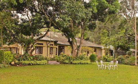 Ancoombra Tea Estate Bungalow