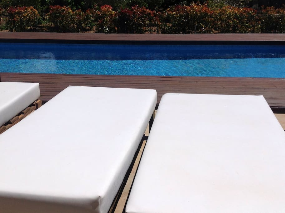 Hamacas en la piscina