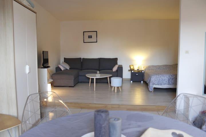 Studio cosy au centre historique - Mulhouse - Apartamento