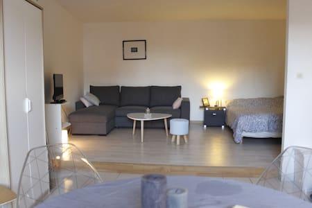 Studio cosy au centre historique - Mulhouse