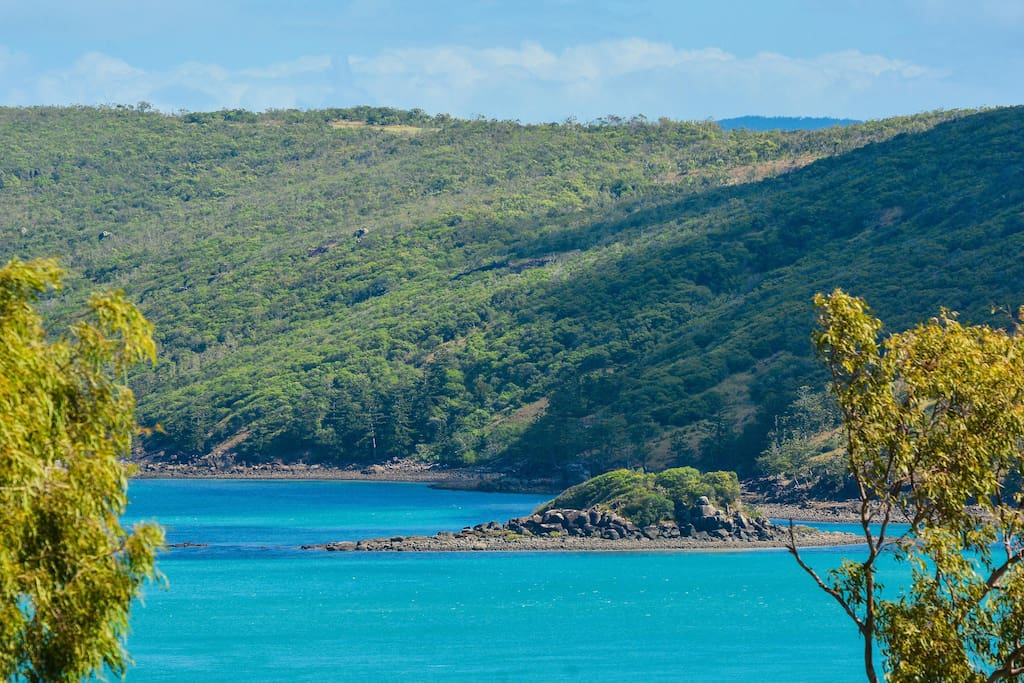 Oasis 8 on Hamilton Island - Apartments for Rent in ...