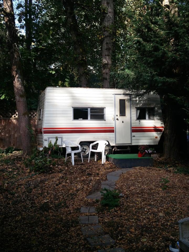 Cozy Camper in Wooded SW Neighborhood