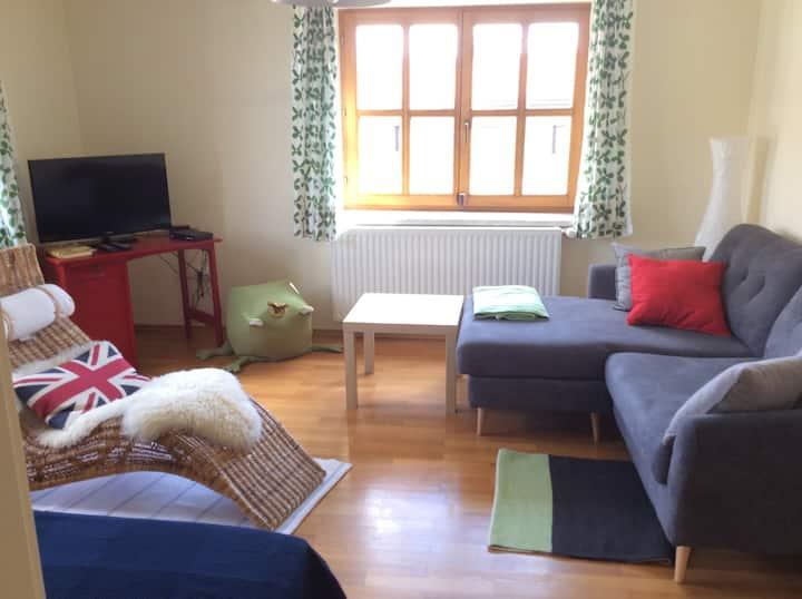 Großzügiges Apartment im Zentrum von Esternberg