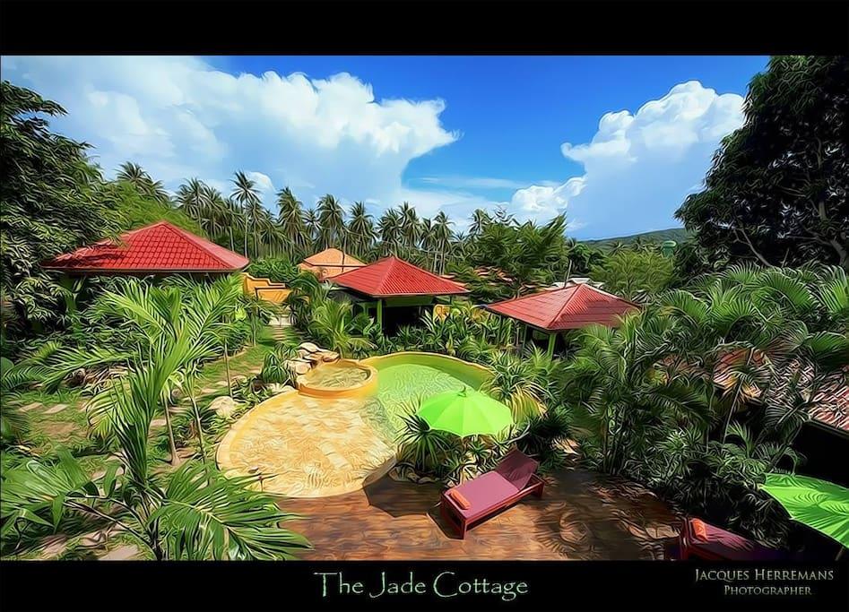 Cottage 50 m2,au milieu d un jardin tropical,autour d une piscine
