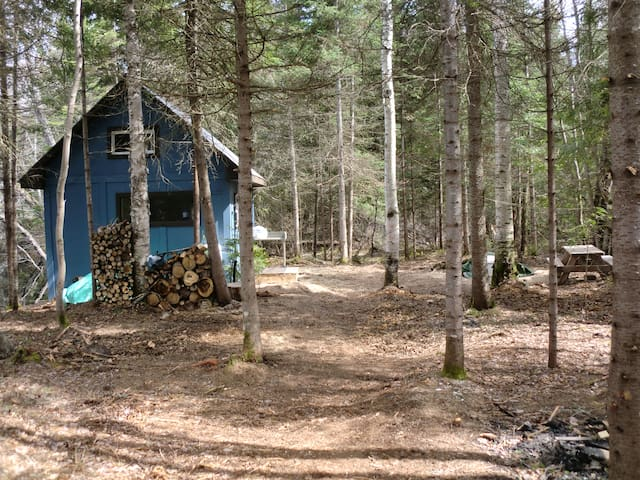 Cabin -Trails-River-Lake with FREE kayaks, Canoes - Sundridge - Stuga