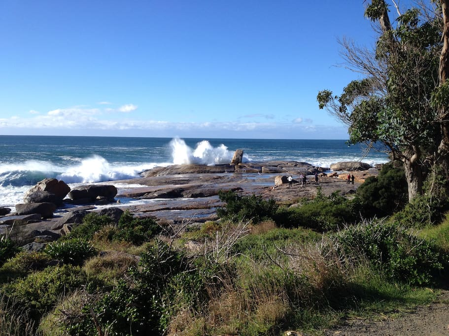 The famous Blow Hole - just down the road