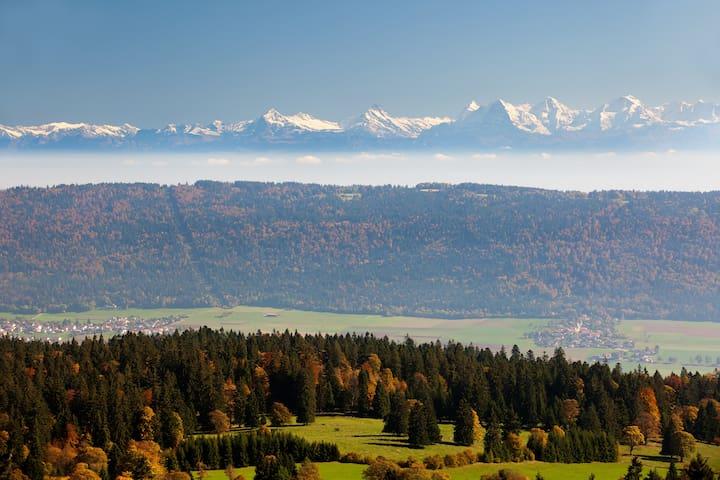 Vue des Alpes à quelques km
