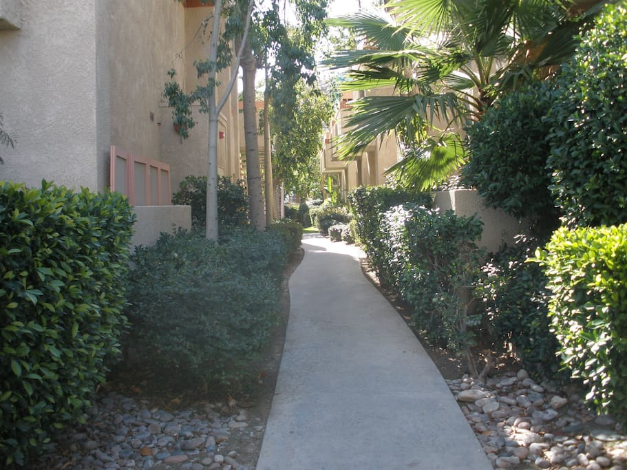 Walk way from the front gate toward property