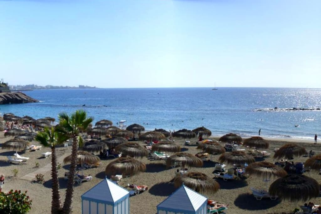 santa cruz de tenerife muslim dating site Explore tenerife with the one day in tenerife travel guide on expect to pay more in the resorts than santa cruz de tenerife dating back to 1497, san andres.