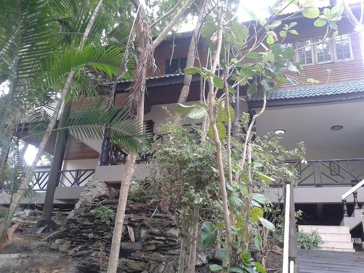 Jungle Gym & Ecolodge