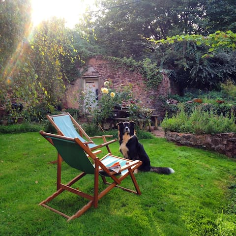 Mr Depp in the back garden with the papers