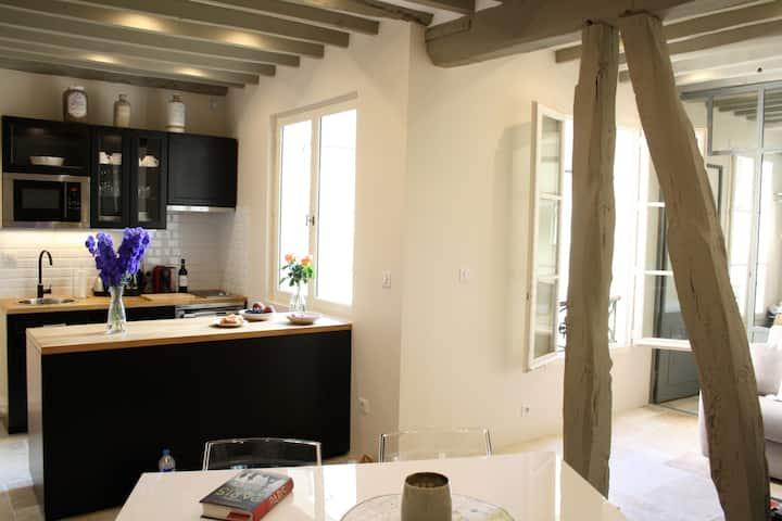 Luxurious Apartment Center of Paris