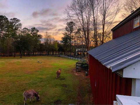Warriors Rest: Country farm setting!
