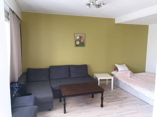 Louhela apartment