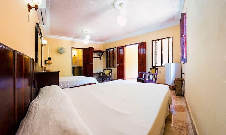 Suite privada con vista al Jardín Benjamín