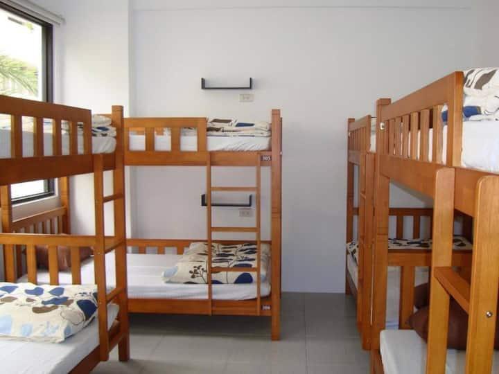Taichung Backpacker41 SG Female Dorm