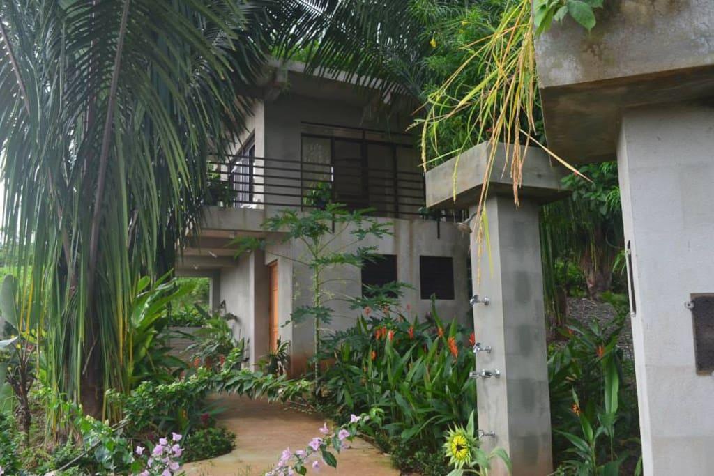 The Modern tree house built on a cistern is adjacent.