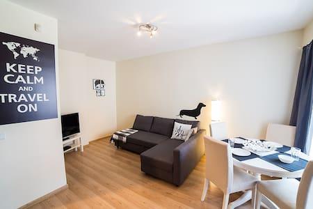 Spacious and bright flat in Vilnius - Apartmen