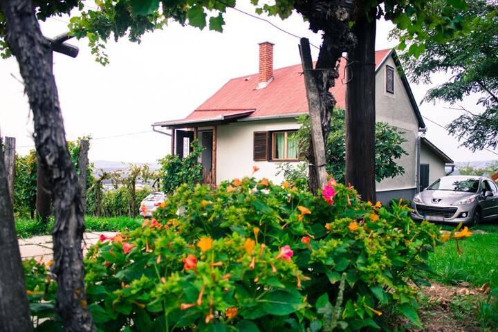 FARKAS Wine cellar & Guest house - Tapolca